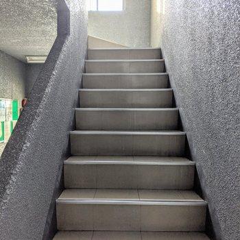 階段は屋内にあり、横幅は2人で通れるくらい。
