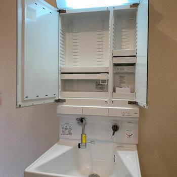 鏡裏に収納もあり、シャワーノズルタイプです。
