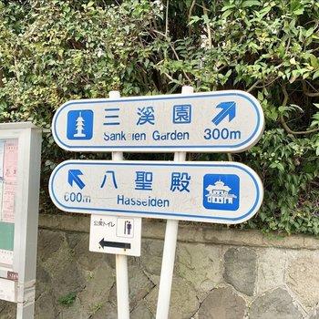 観光地の三渓園が近いんです。
