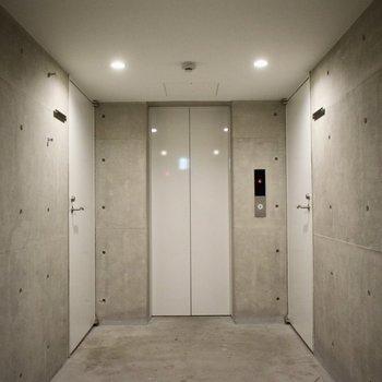 コンクリートと白で綺麗なフロア。この空気感が、いい。