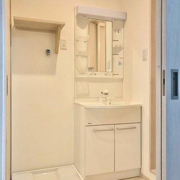 洗面台や洗濯パンもきれいです。シャンプードレッサーで朝の支度も捗る〜