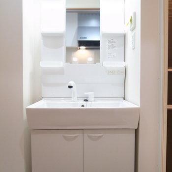 浴室を出て右に洗面台。(※写真は2階の同間取り別部屋のものです)