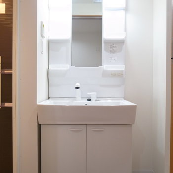 お風呂を出て左側に洗面台があります。(※写真は3階の同間取り別部屋のものです)