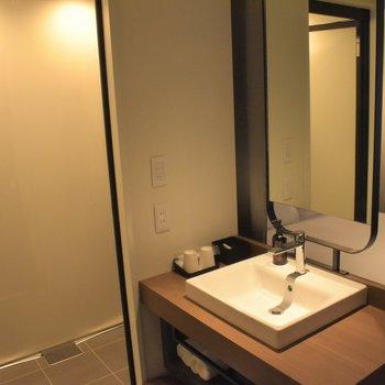室内にサニタリースペースも設置されています。