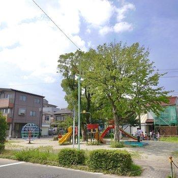 団地の外にも公園が。こちらは遊具もたくさんある「光音寺公園」。