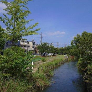 公園内には川も流れていて、自然も感じることができます。