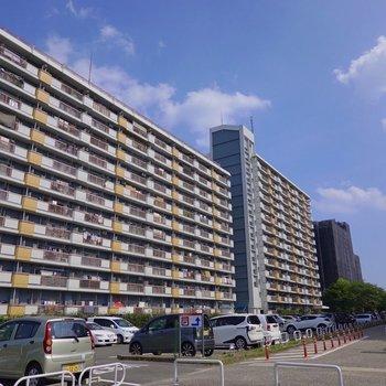 お部屋があるのは「水草団地」。黒川駅から徒歩で約17分の大きな団地です。
