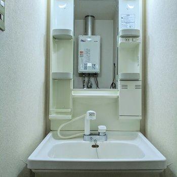 シャワーヘッド付きの独立洗面台。