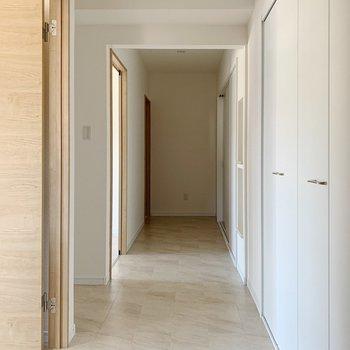 廊下へ出ると、右側一面は収納になっています。