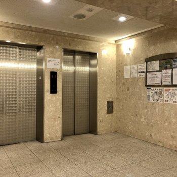エレベーターホールも綺麗に整備されています。