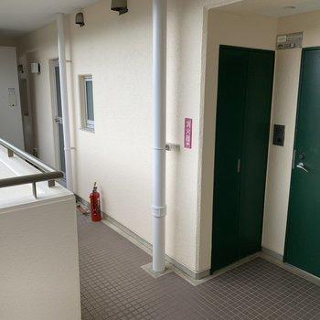 【工事前】共用部分もきれいです。深いグリーンの扉です。
