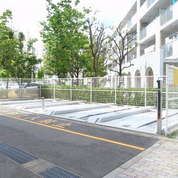 【共用部】駐車場は建物の裏手にずらっと。