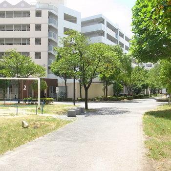 【共用部】とっても広い敷地内は、ひとつの街のようです。休憩スポット・公園・広場などを見かけました♪