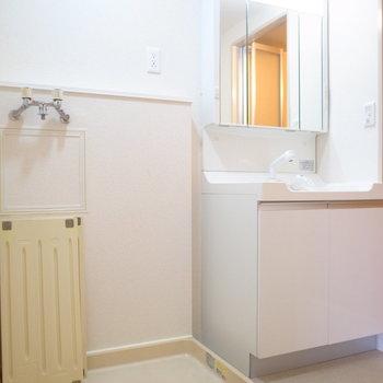 浴室を出て右手に、洗面台と洗濯機置き場が並んでいます。