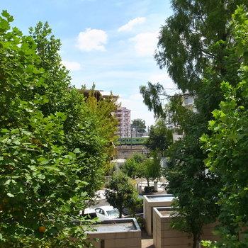 この通り!すぐ目の前に緑があって、向こうには空。そして線路も見えます。