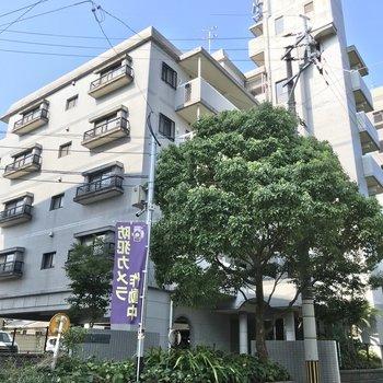 よかトピア通り沿いにある建物の1室。
