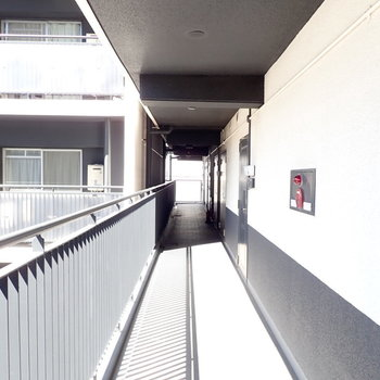 共用部】陽射しの差し込む廊下です。