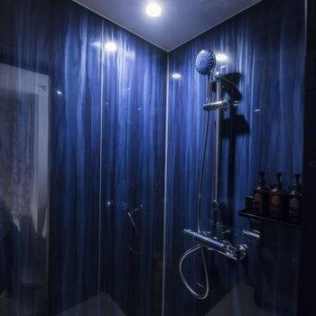 浴室はシャワールームです。