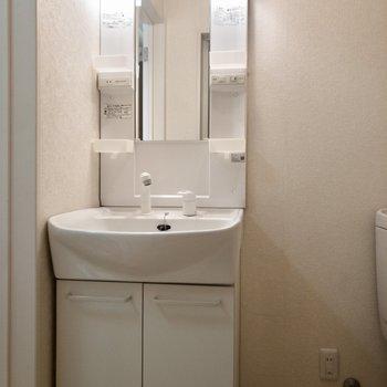 トイレの横に洗面台があります。