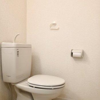 トイレは洗面台と同室になります。