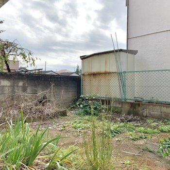 【専用庭】かなり広いお庭。入居前に草は抜かれるそうなので安心です。
