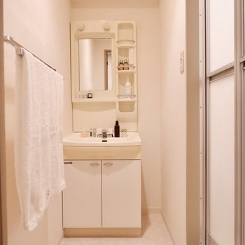 脱衣所。機能的な印象の洗面台。