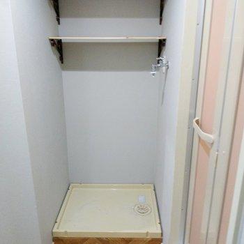 洗濯機置き場の上には棚が。洗剤やタオルも置いておけます。