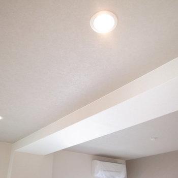 照明はダウンライトと、シーリングライトを取り付けられます。