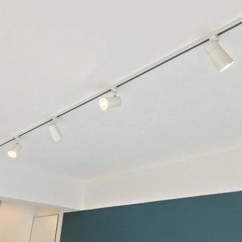 天井にはライティングレール。観葉植物など、さらにグリーンを足してもいいな。