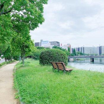近くの川の遊歩道、お散歩したいな。