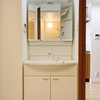 独立洗面台。女性にうれしい、大きな鏡ですね。