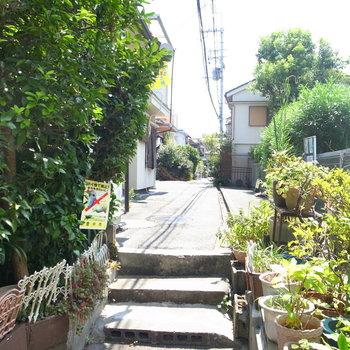 【周辺環境】入り組んだ住宅地の中の、この通路をまっすぐ進むとお部屋へ。林の小道っぽい雰囲気がいい!
