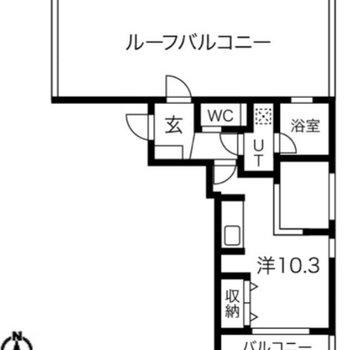間取りは1DK。お部屋と同じ大きさのルーフバルコニーがあります。