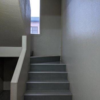 階段は室内なので、天候が悪くても大丈夫そうです。
