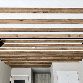 この堂々たる天井がお気に入り。スポットライトも映えますね。