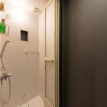 【共用部】浴室はシャワールームです。