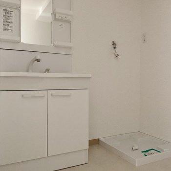 洗面台も洗濯機置場もまだまだきれいです。