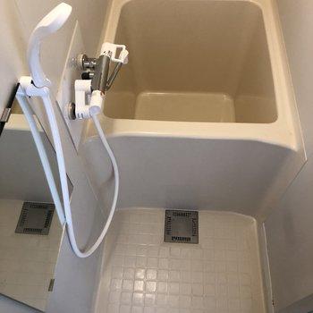 バスルームはコンパクト。