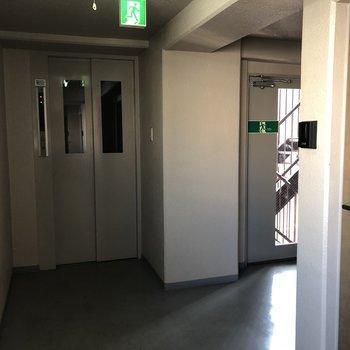 共用部はこんな感じ。廊下には窓がついていて外からの光も取り込んでいるので、昼間は電気がなくても明るいです。