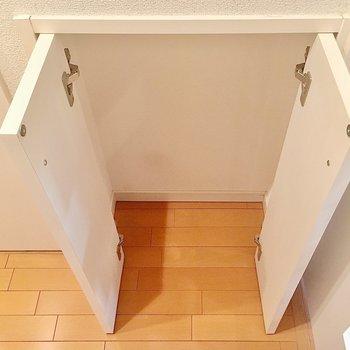 廊下にはミニ収納があります。掃除道具を入れてもいいかも。