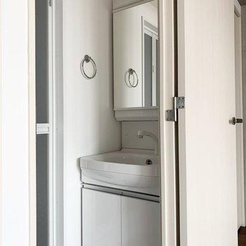 右側のドアの中にはぴったりシャンプードレッサー。