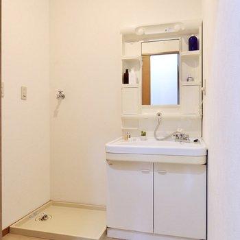 ゆったりめの脱衣所には、独立洗面台と洗濯機置き場が。