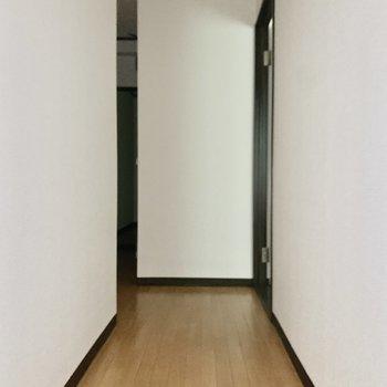 廊下に出て、洋室へ。※写真は通電前のため、フラッシュを使用しています