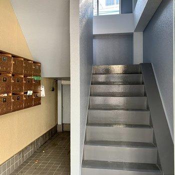 階段は普段の荷物くらいなら通りやすい幅です。