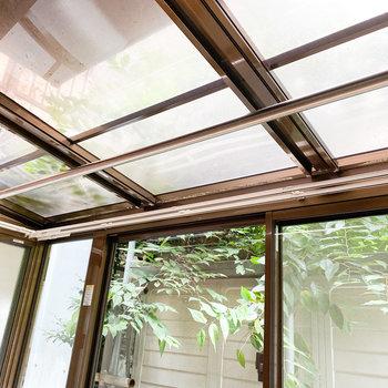天井もガラスです