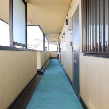 玄関前共用部。明るいスペースです。