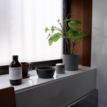 窓際には小物や調味料を置いたり、日当たりが良いのでちょっとした植物も育てられそう。