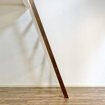 梯子側にはクローゼットが置ける空間も。
