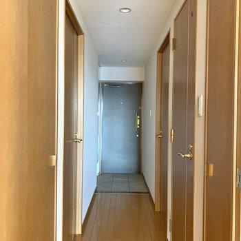 廊下へ出てすぐの場所には収納が2つあります。※写真はフラッシュを使用しています