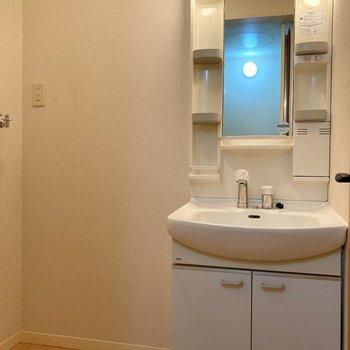 洗面台は独立しています。となりに洗濯機置き場が並んでいますよ。